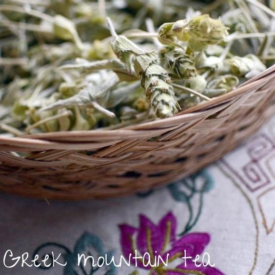Greek Mountain tea.jpg