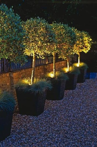 outdoor lights art group.jpg