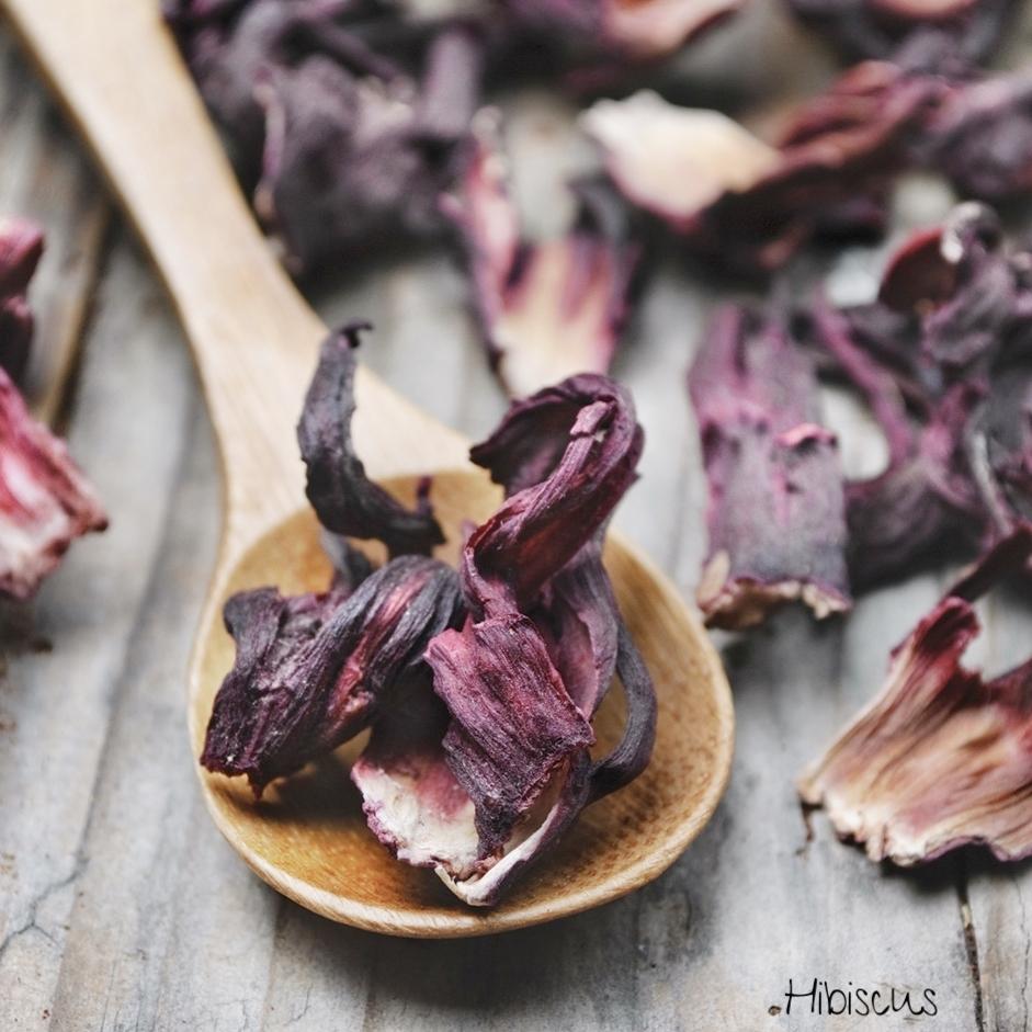 sporus hibiscus.jpg