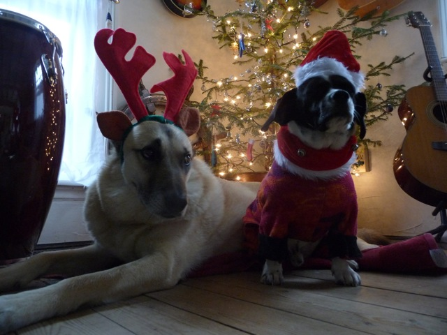 ChristmasHudson&Jo.jpg