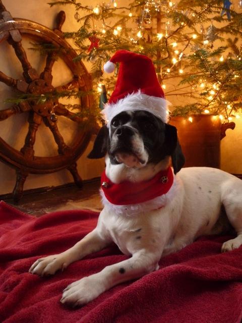 ChristmasJo.jpg
