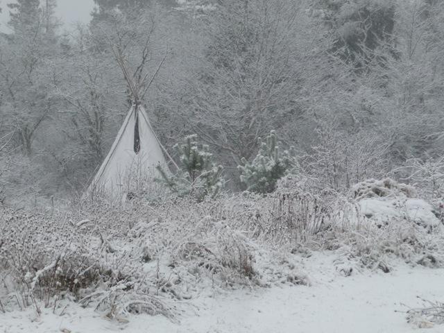 WinterTipi.jpg