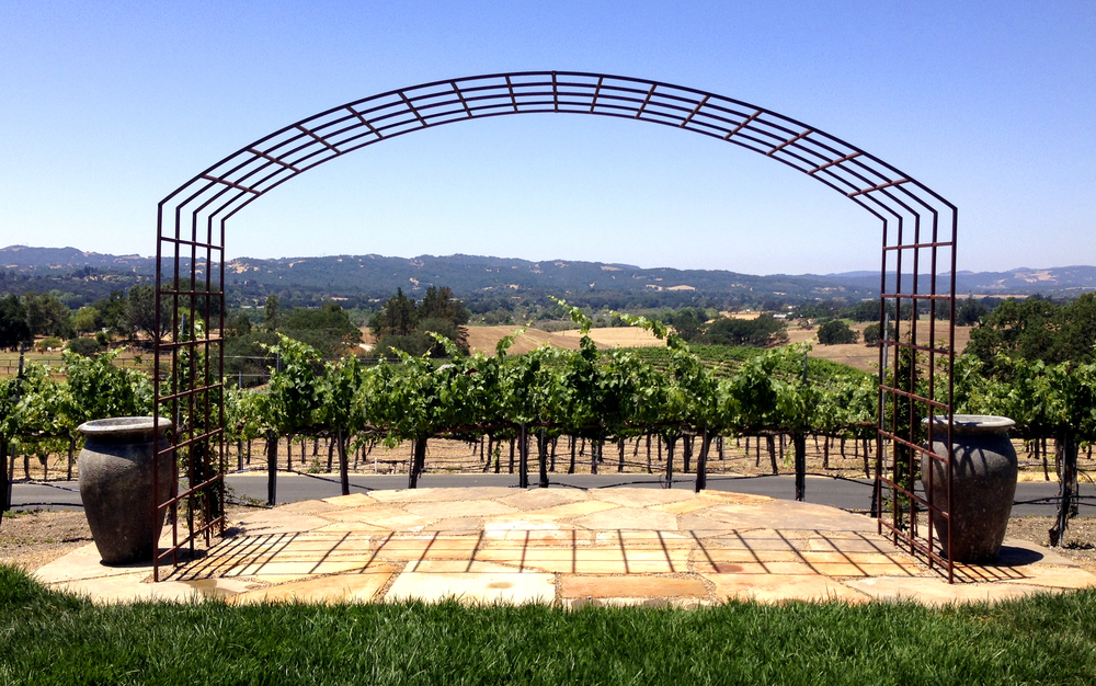 The wedding venue provides beautiful views of the vineyards and surrounding Central California hills.