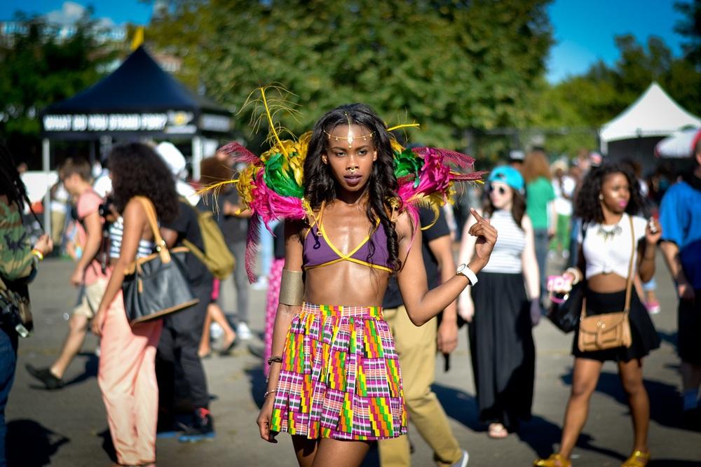 Afropunk, à la croisée des musiques alternatives (ADIAC)
