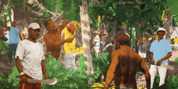 «Imagine Brazil»: fenêtre sur l'art brésilien à DHC/ART (Huffington Post Qc)