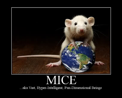 mice the ultimate oracle (hitchhikers guide to galaxy)