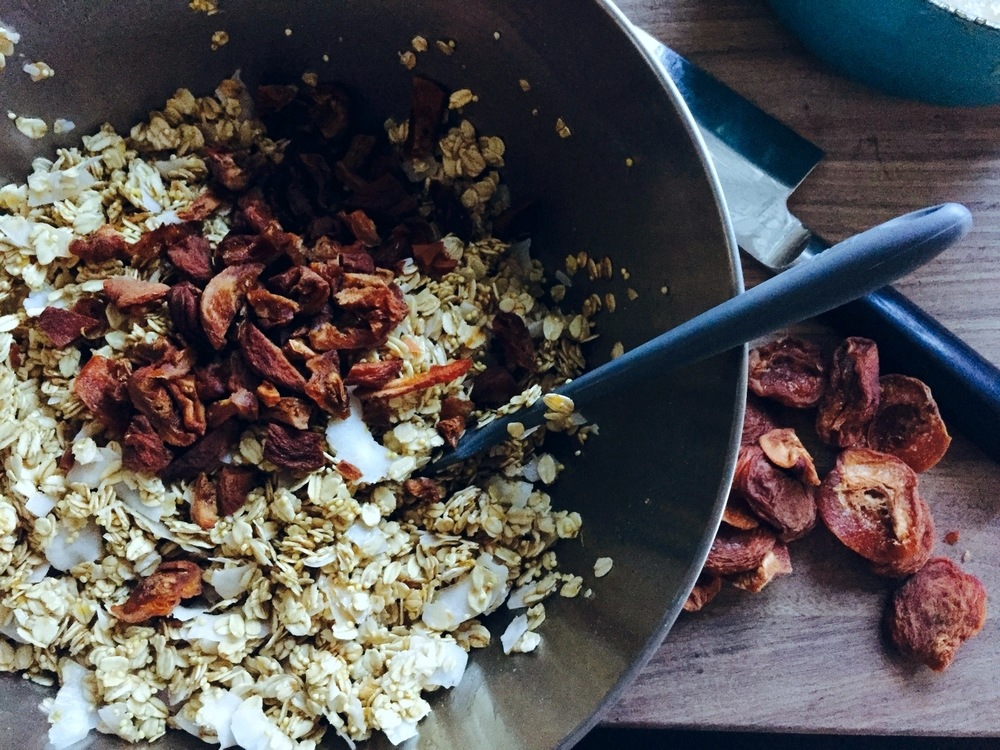 Coconut Granola with Millet and Dried Apricots