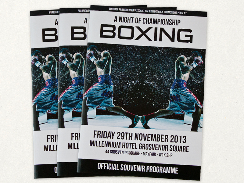 boxing-brochure.jpg
