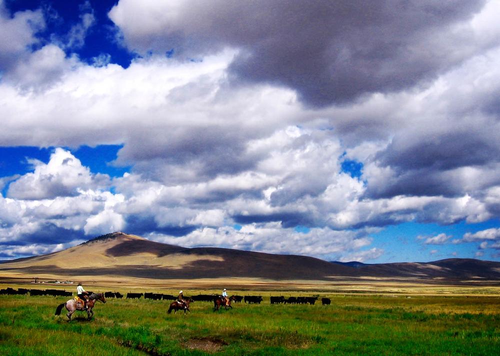 Montana Sky-Edit.jpg