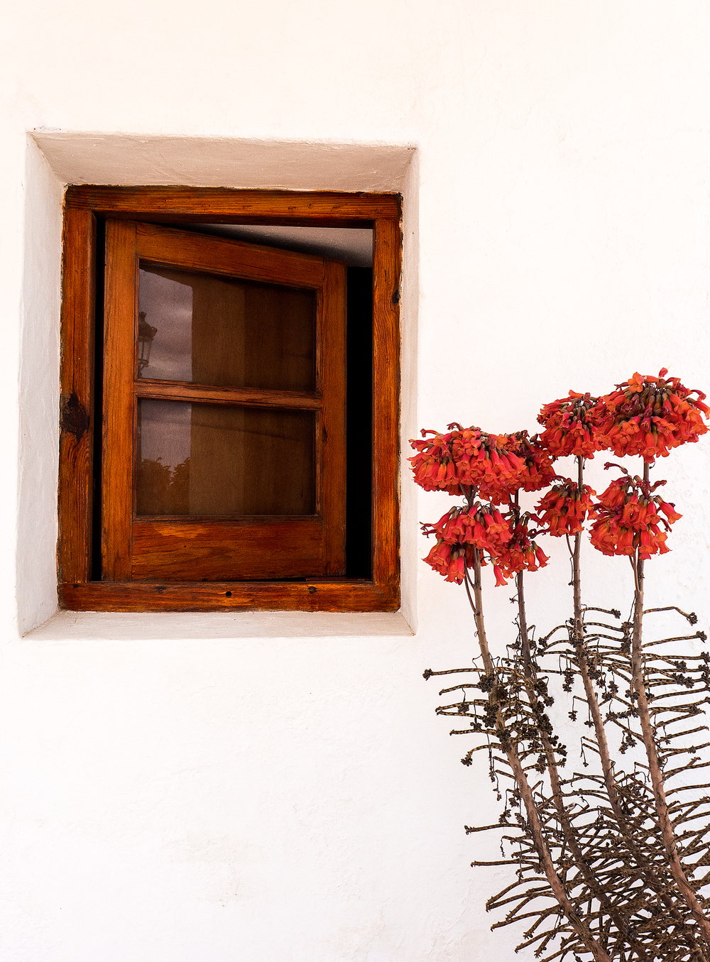 window_11x15 panel box.jpg