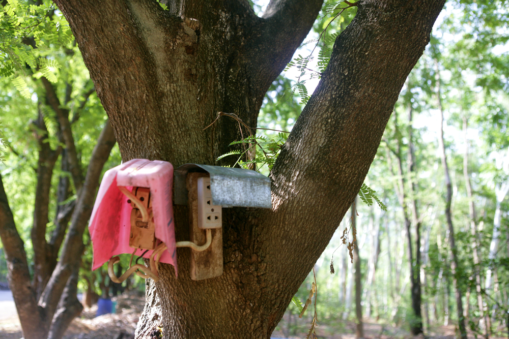 Power Outlet in the Forest.jpg