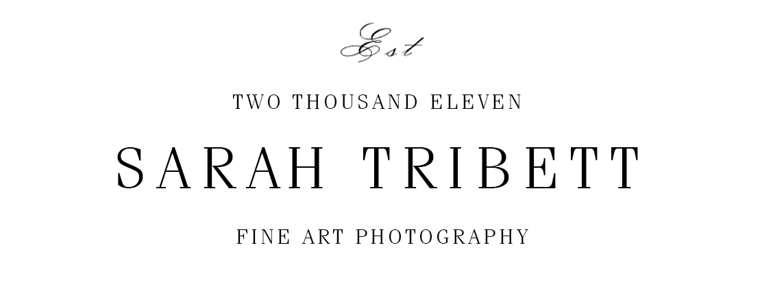 Sarah Tribett Photographers | Fine Art Wedding & Engagement Photography | Denver Colorado, California, & Destination
