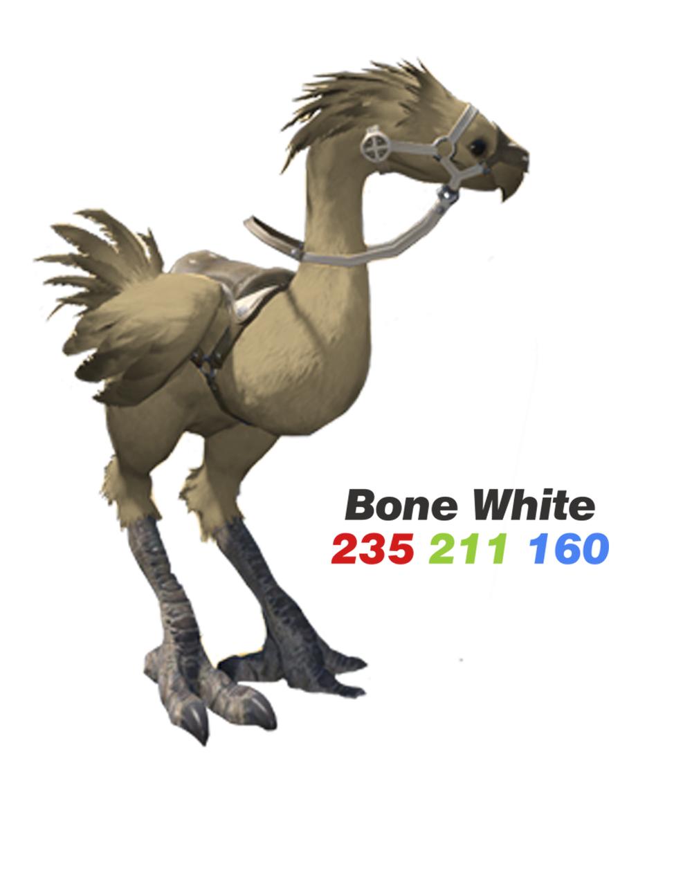 BoneWhite.png