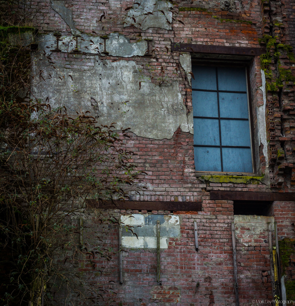 Abandoned-Seattle-Brewery-Window-by-Mark-Ley