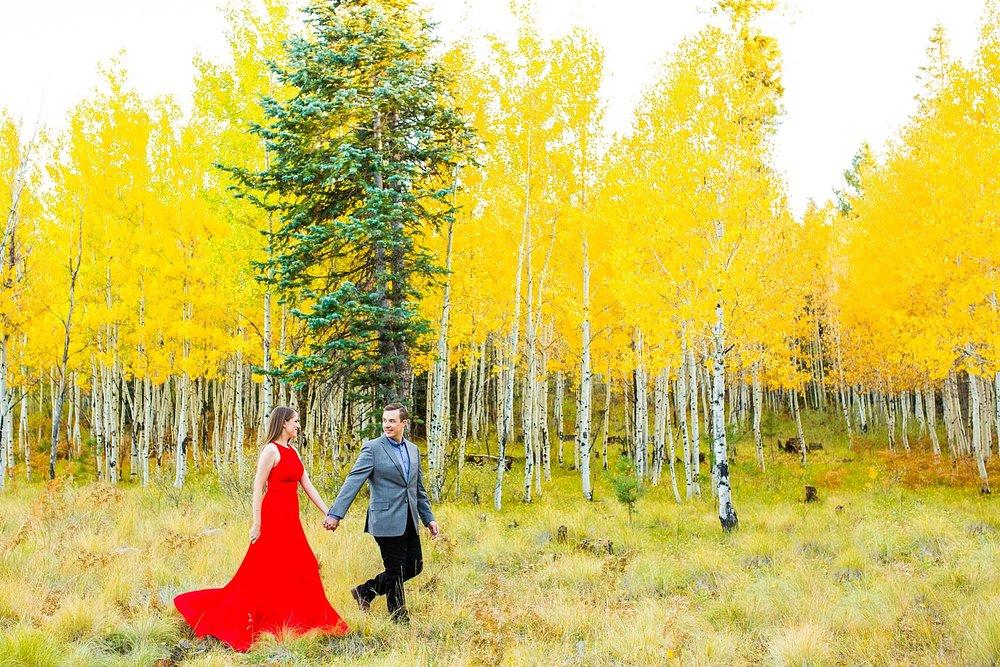 Hurst-Aspen-Engagement-15.jpg