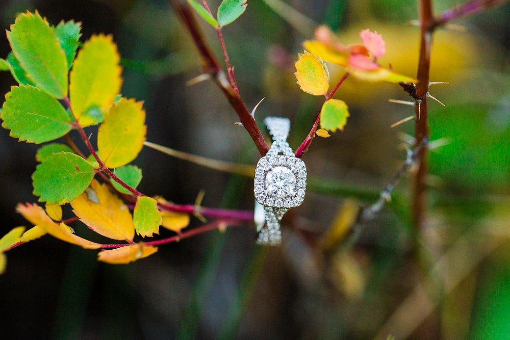 Hurst-Aspen-Engagement-20.jpg