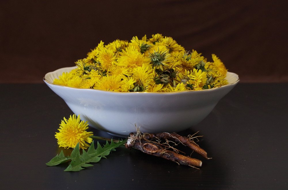rooted in humble dandelion - Not just a weed anymore! This prebiotic plant helps keeps your gut flora nourished & happy, while a 2017 medical study suggests it's polysaccharides can benefit your liver to naturally promote detoxification. When roasted, dandelion roots deliver a stunningly rich flavor & deep brown color.