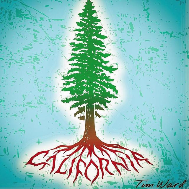 Roots are stronger than fire. Sending all our energy & love to those who have been effected by these devastating fires. We will survive! . 📷@lifeatseaco #californiastrong #itswhatsunderneath #yoottea