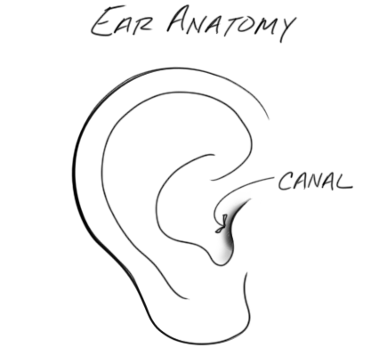 If you have a large ear canal, you may find it difficult to discern the benefit of expensive earbuds because a large canal requires a large dome for a good seal.