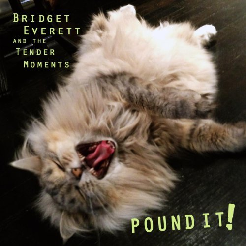 Bridget Everett and the Tender Moments - Pound It (LP) - Click here to purchase
