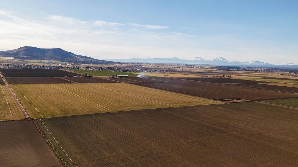 SW Highland 3.jpg