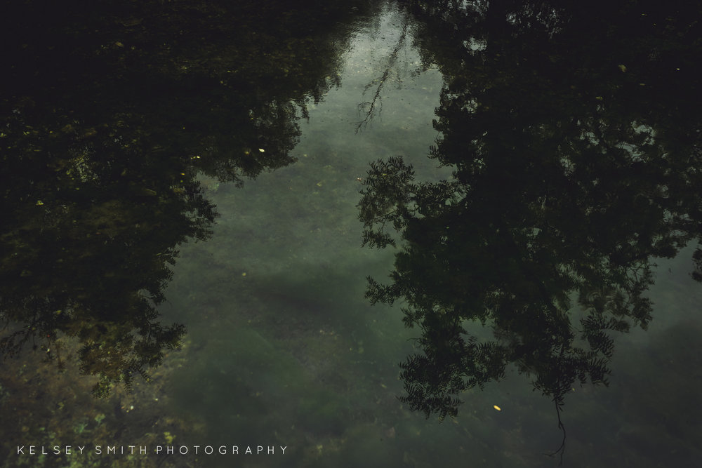 TheDeadTreeSociety_KelseySmithPhotography (Web Resolution)-28.jpg