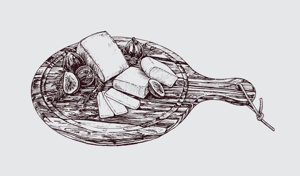T_Illustration_3503.jpg