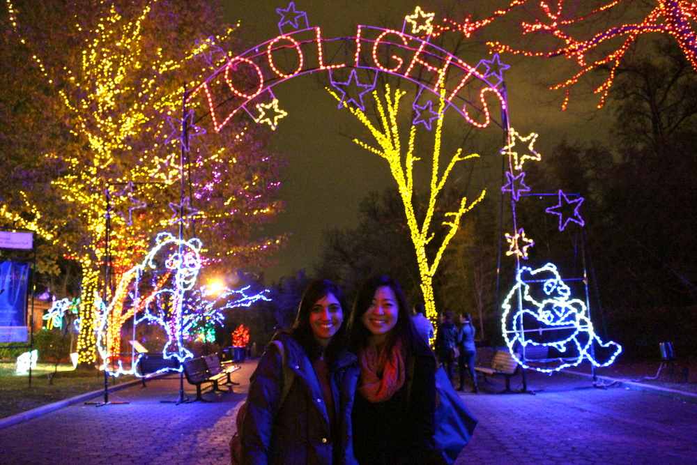 ZooLights with Friends