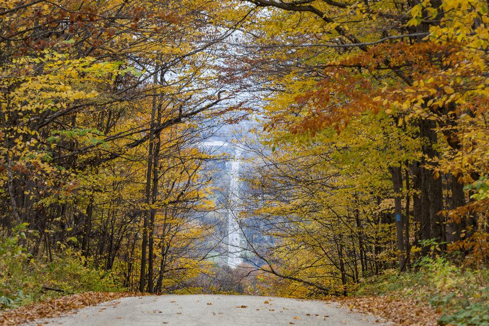Collingwood-Ontario-11.jpg