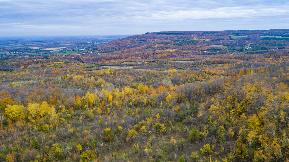 Collingwood-Ontario-14.jpg