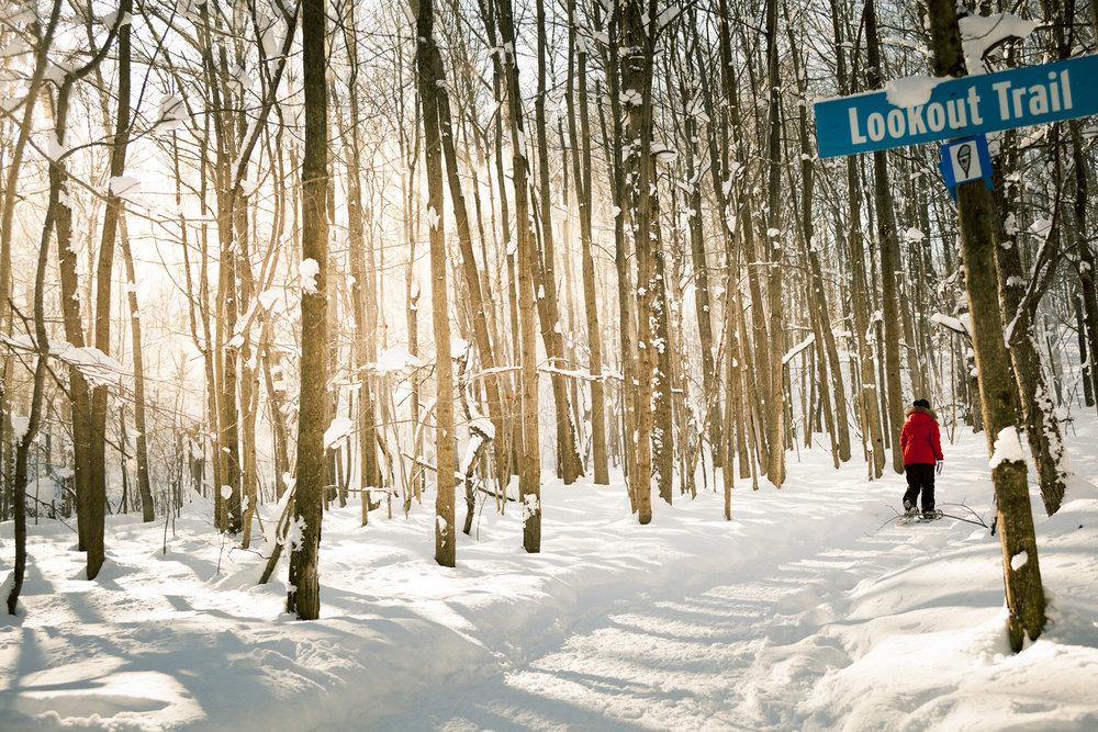 Collingwood-Ontario-33.jpg