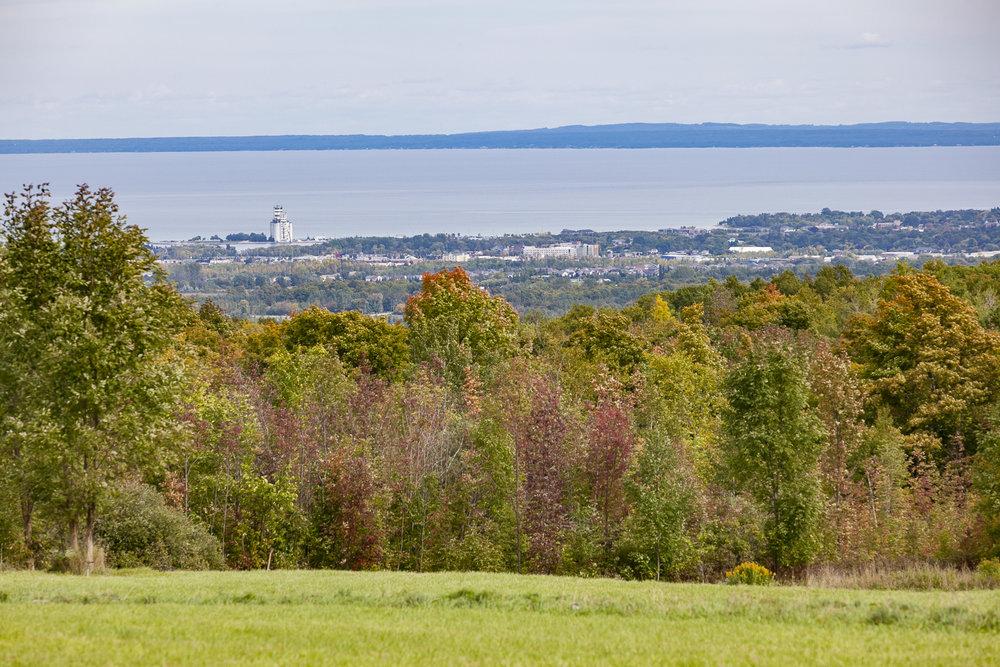 Collingwood-Ontario-48.jpg
