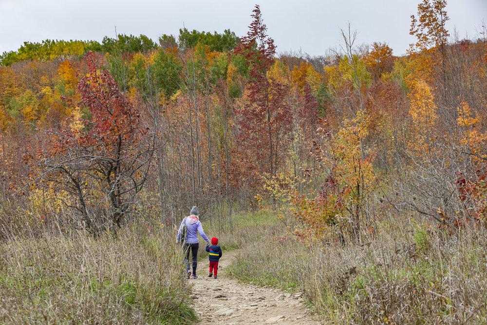 Collingwood-Ontario-53.jpg