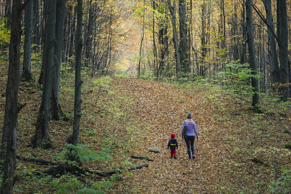 Collingwood-Ontario-55.jpg