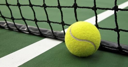 Come out and show  your tennis skills at Savannah's Spring Tennis Tournament! This tournament is open to all ages and skill types Please register here or contact patricia.martin@fsresidential.com