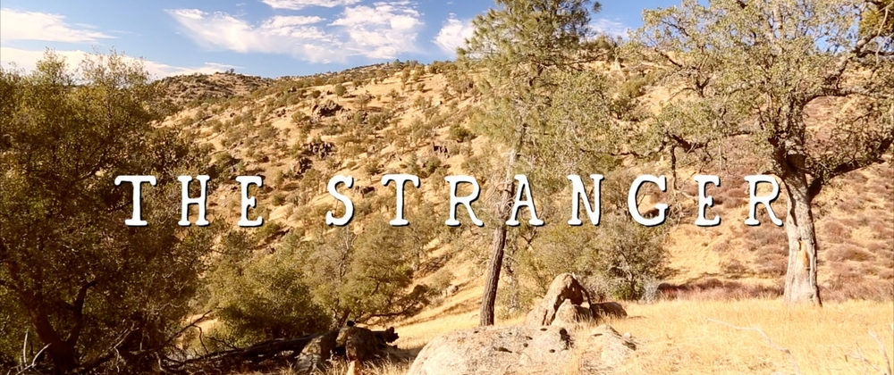 the stranger title card