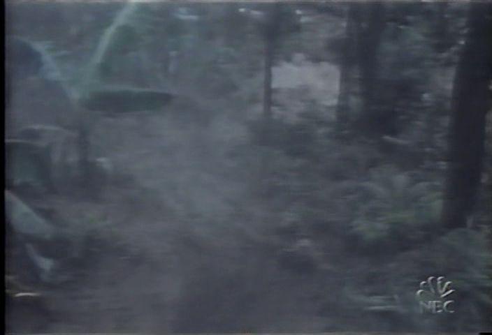 1984-04-07-28.jpg
