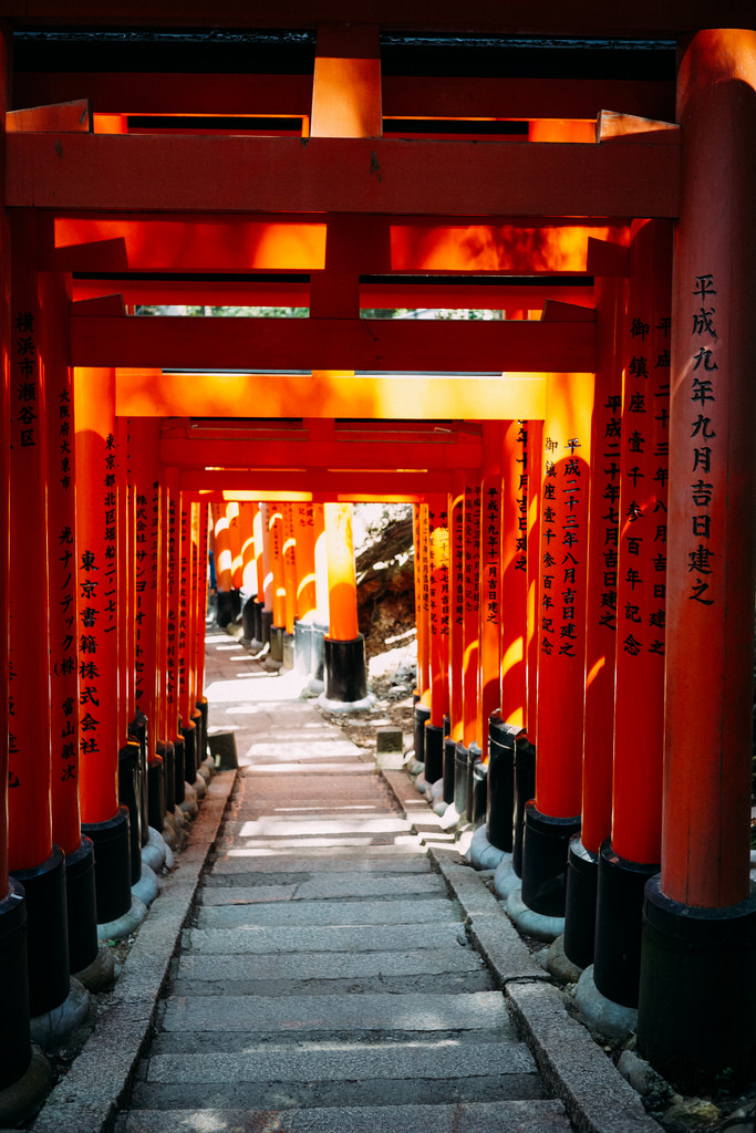 one of many torii
