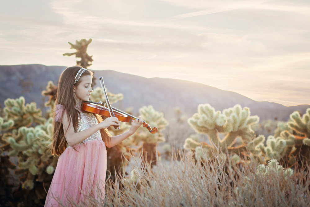 Sadie_violin2.jpg