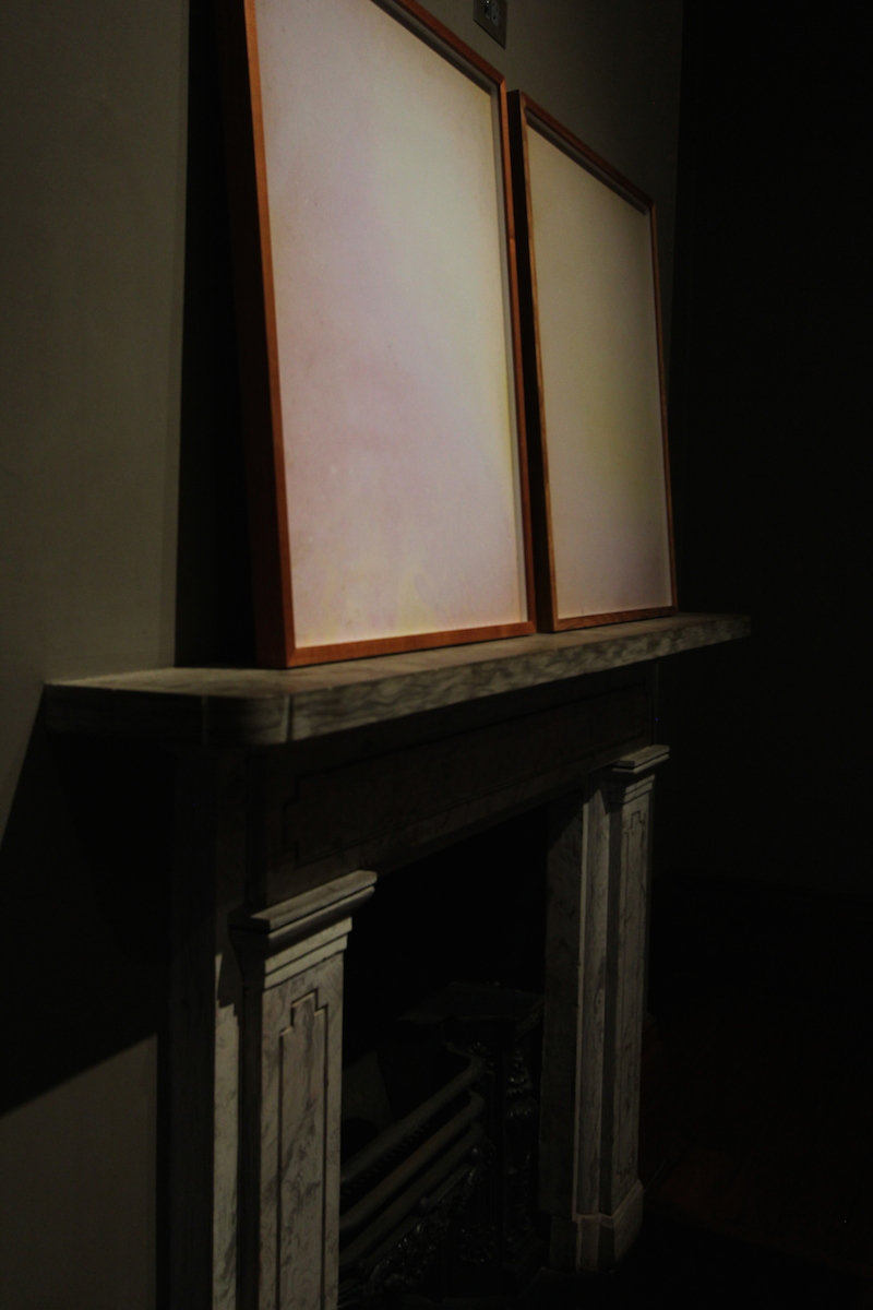 Acid/Gothic , Elizabeth Bay House installation view