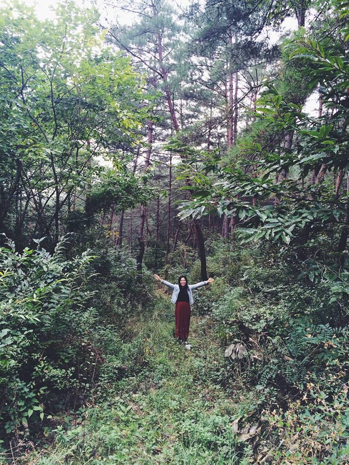 Taken in countryside of Korea inSeptember 2014.