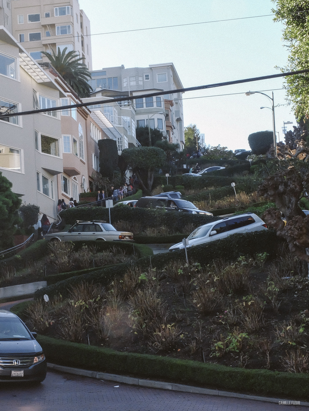 SAN-FRANCISCO-69.jpg