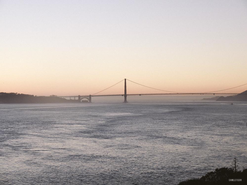 SAN-FRANCISCO-105.jpg