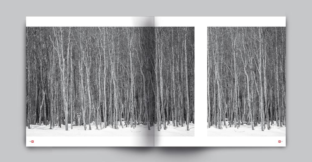 book ENGADINA-4I.jpg