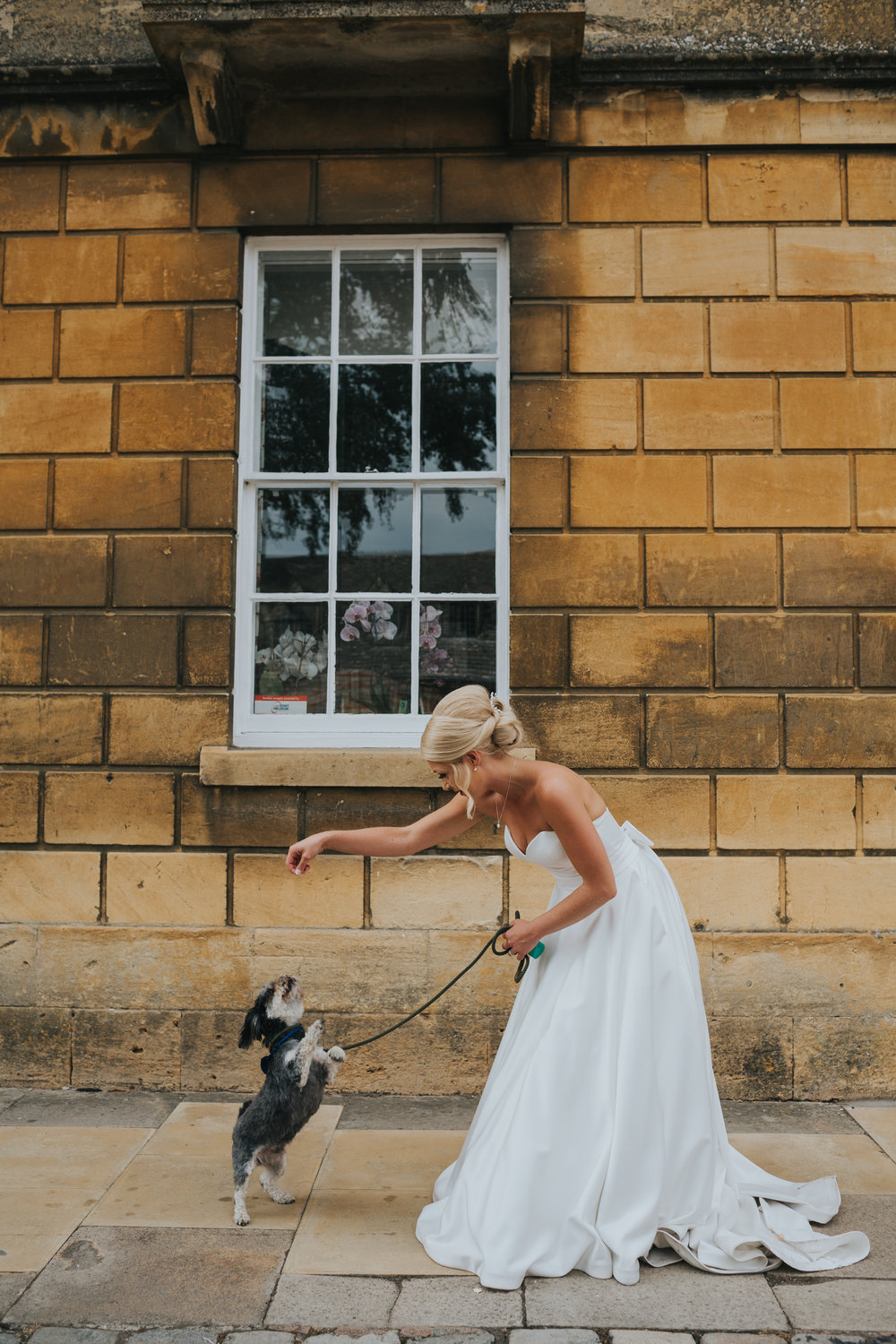 Bride has her dog beg for a treat.