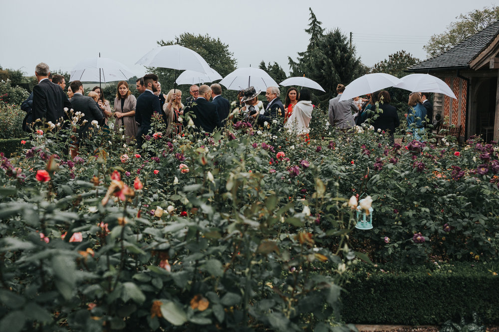 A crowd of wedding guests stand together under their white wedding umbrellas across a sea of colourful roses and flowers at Goldstone Hall.
