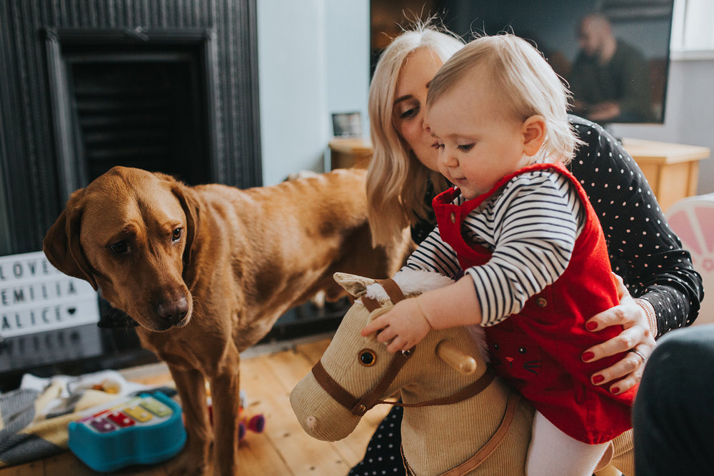 Dog looks at child on rocking horse, wondering what the hell she is doing, Liverpool.