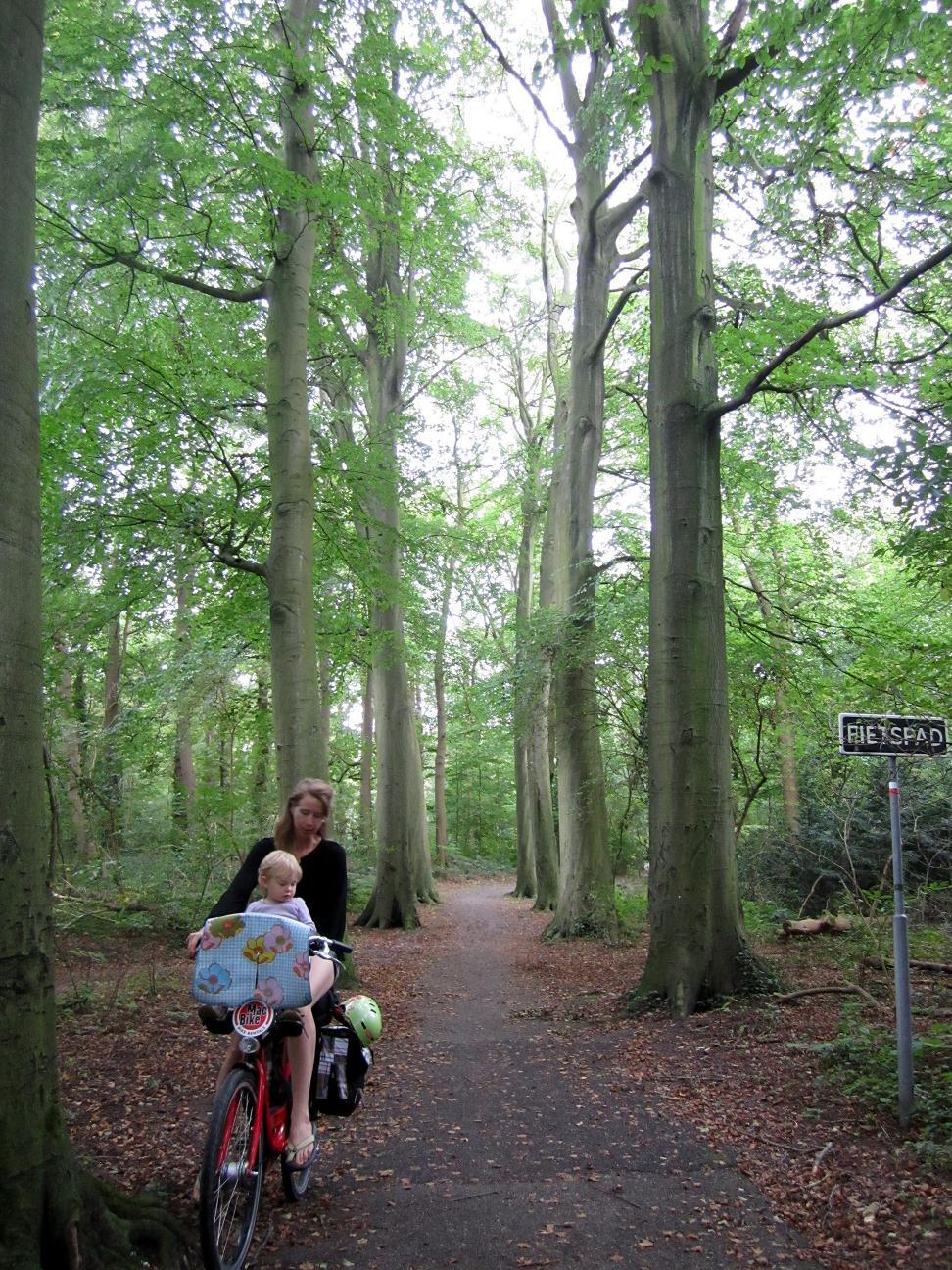 The Hague'sScheveningse Bosjes is a park providing a grand entrance to the Dunes.