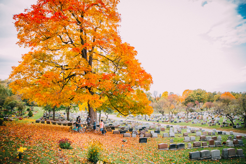 Bikabout-Montreal-Mount-Royal-Cemetery-Fitz-and-Follwell.jpg