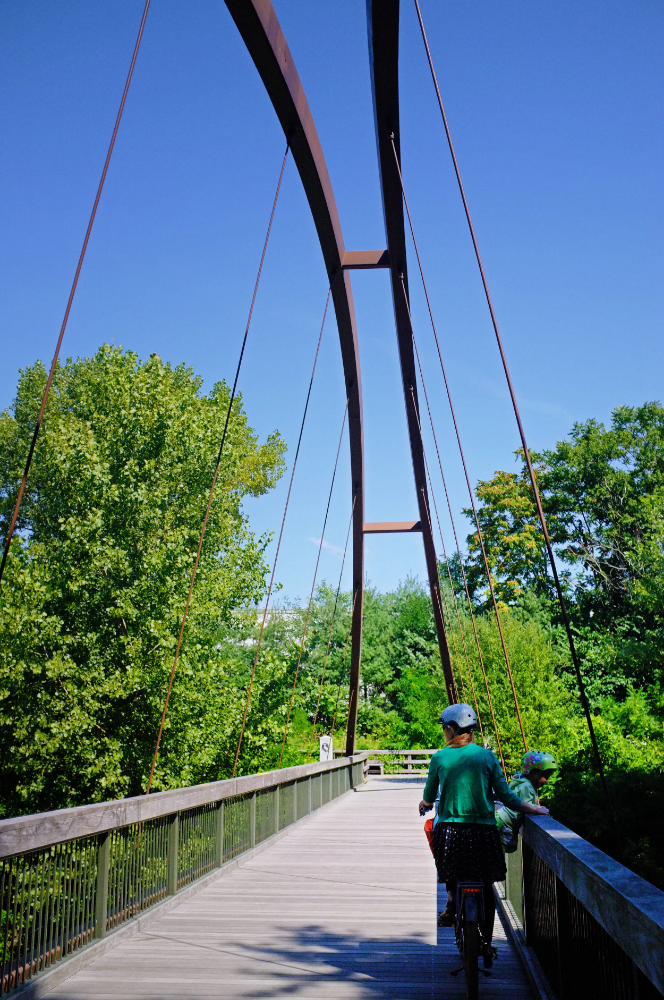 Suspension Bridge connecting the Blue Heron Trail